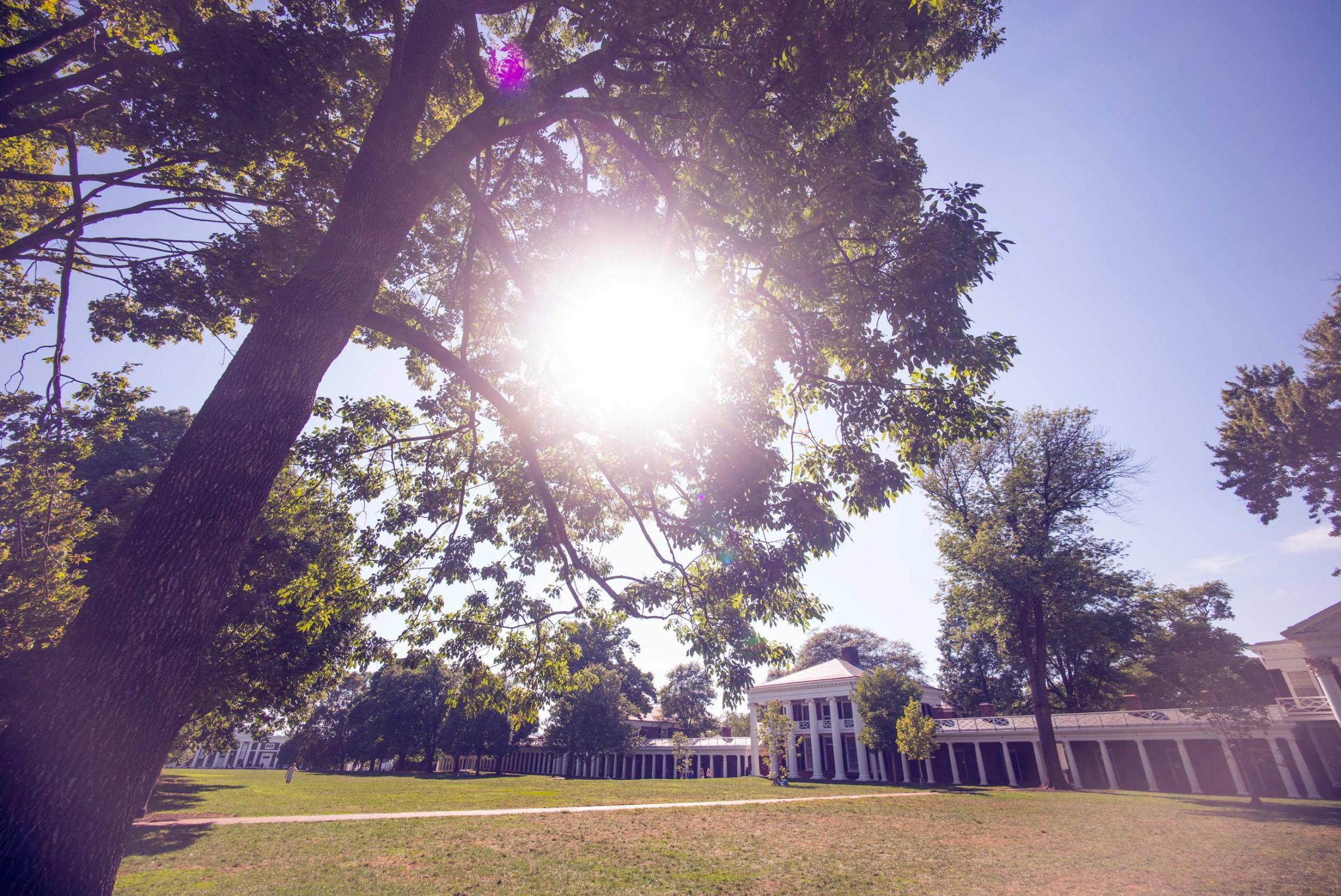 The University of Virginia's Lawn, the first thing visitors take in during the virtual tour.