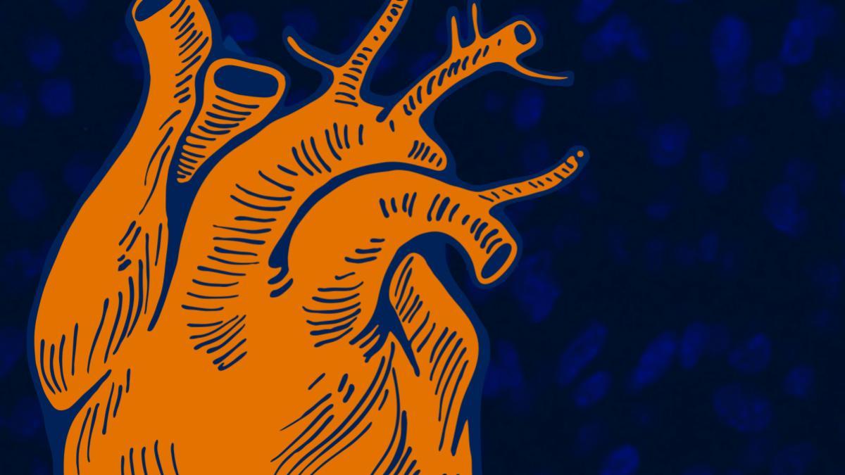 heart_research_header_3-2.jpg