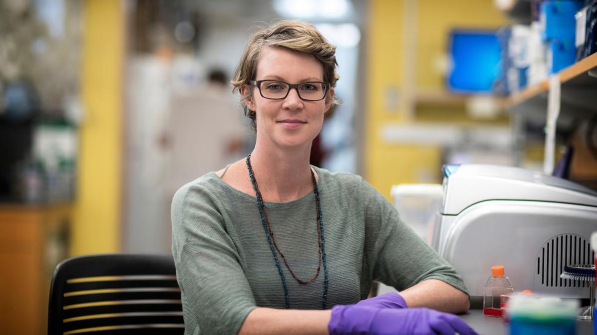 UVA biology professor Jennifer Güler is investigating the molecular mechanisms that underlie the malaria parasite's ability to evolve drug resistance.