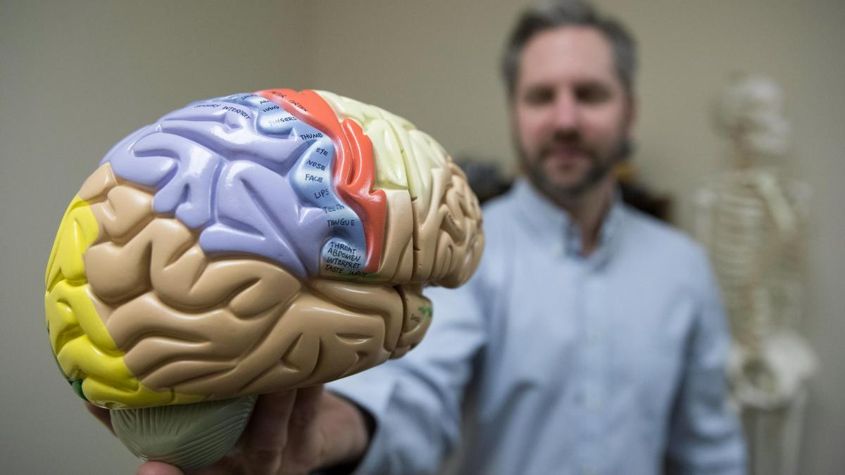 Researcher Uses Computer Models to Get Inside Heads of TBI Victims