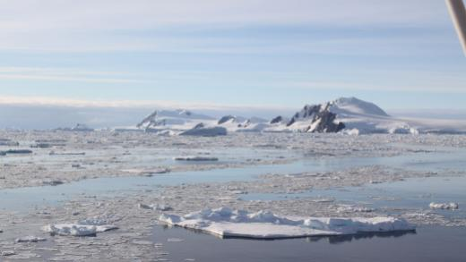 charcot_island_antarctic_peninsula_contributed_header.jpg