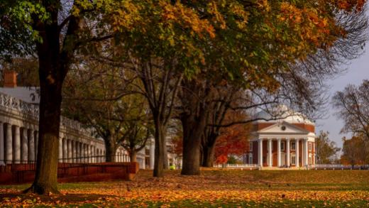fall_rotunda_leaves_ss_header.jpg