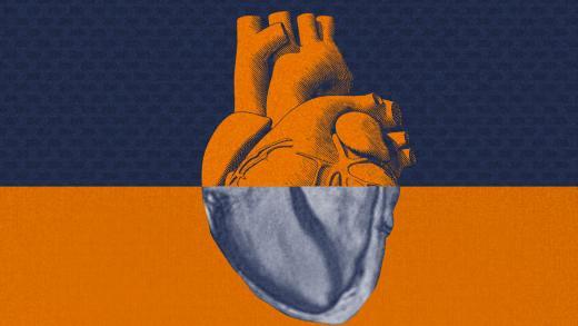 header_ai_heart_imaging.jpg