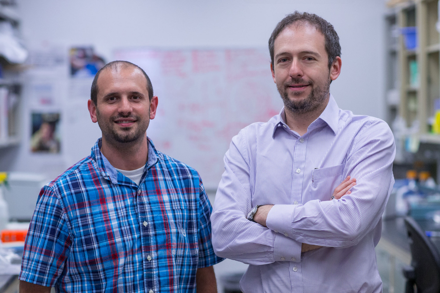 Postdoctoral researcher Anthony J. Filiano, left, and Jonathan Kipnis, chairman of UVA's Department of Neuroscience.