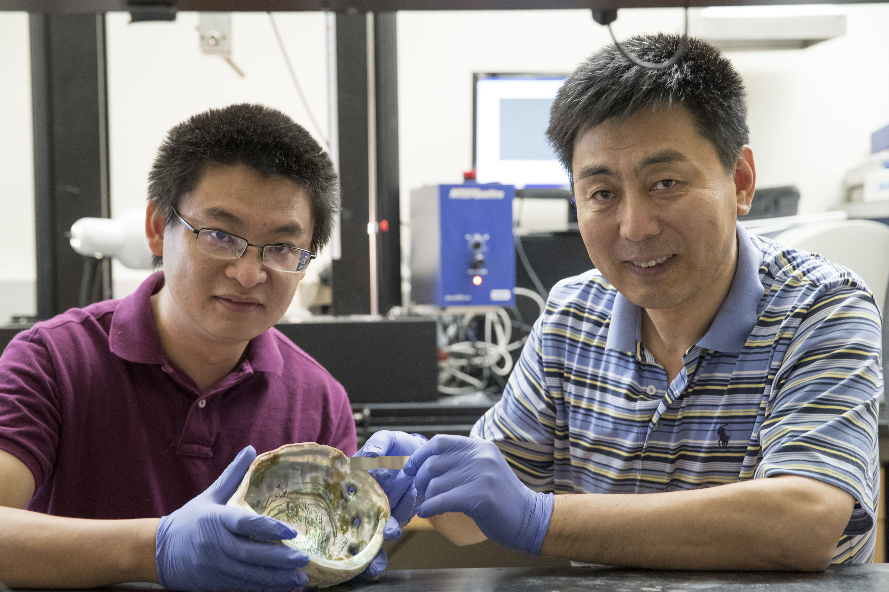 Engineering professor Chris Li, right, and graduate student Yunya Zhang with an abalone shell and a strip of the new metal composite they've developed. (Photo by Dan Addison, University Communications)